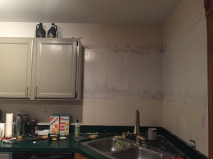 Weekly Update: Kitchen Drama and Cold Weather
