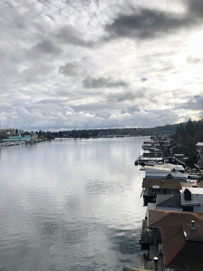 Montlake Seattle